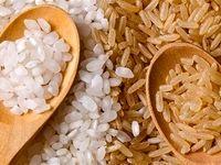 آبیاری مزارع برنج با فاضلاب در حاشیه کلان شهرها و روستاها