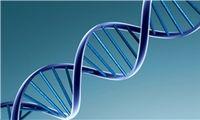 تشخیص DNA با وان حمام چیست؟