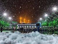 بارش بیسابقه برف در نجف و کربلا +عکس