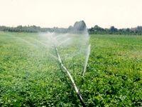 تحویل حجمی آب کشاورزی با کارکرد مجاز انجام میشود