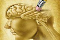کشف درمان برای معکوس کردن از دست رفتن حافظه بر اثر آلزایمر