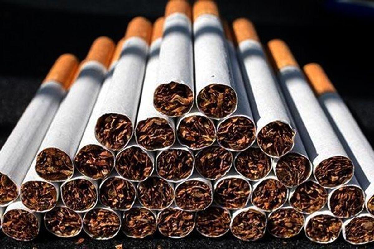 قاچاق سیگار کمتر از نصف شد
