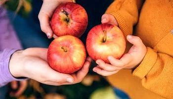 مصرف یک سیب در روز چه فوایدی دارد؟