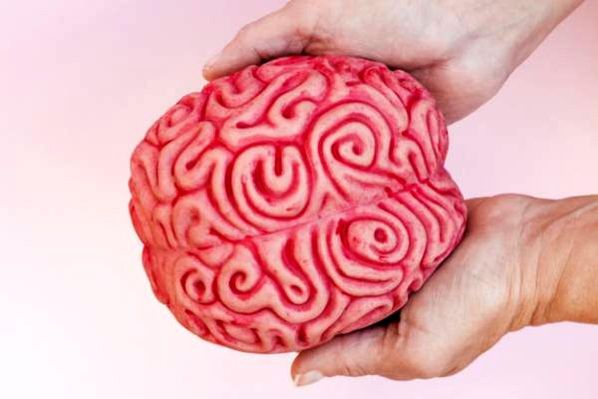 میدانید هنگام بیهوشی چه بر سر مغز میآید؟