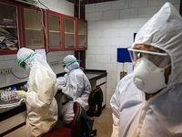 افزایش آزمایشگاهها آمار کروناییها را بالا برد