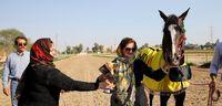 مسابقات اسب اصیل عرب کشور در اهواز +تصاویر
