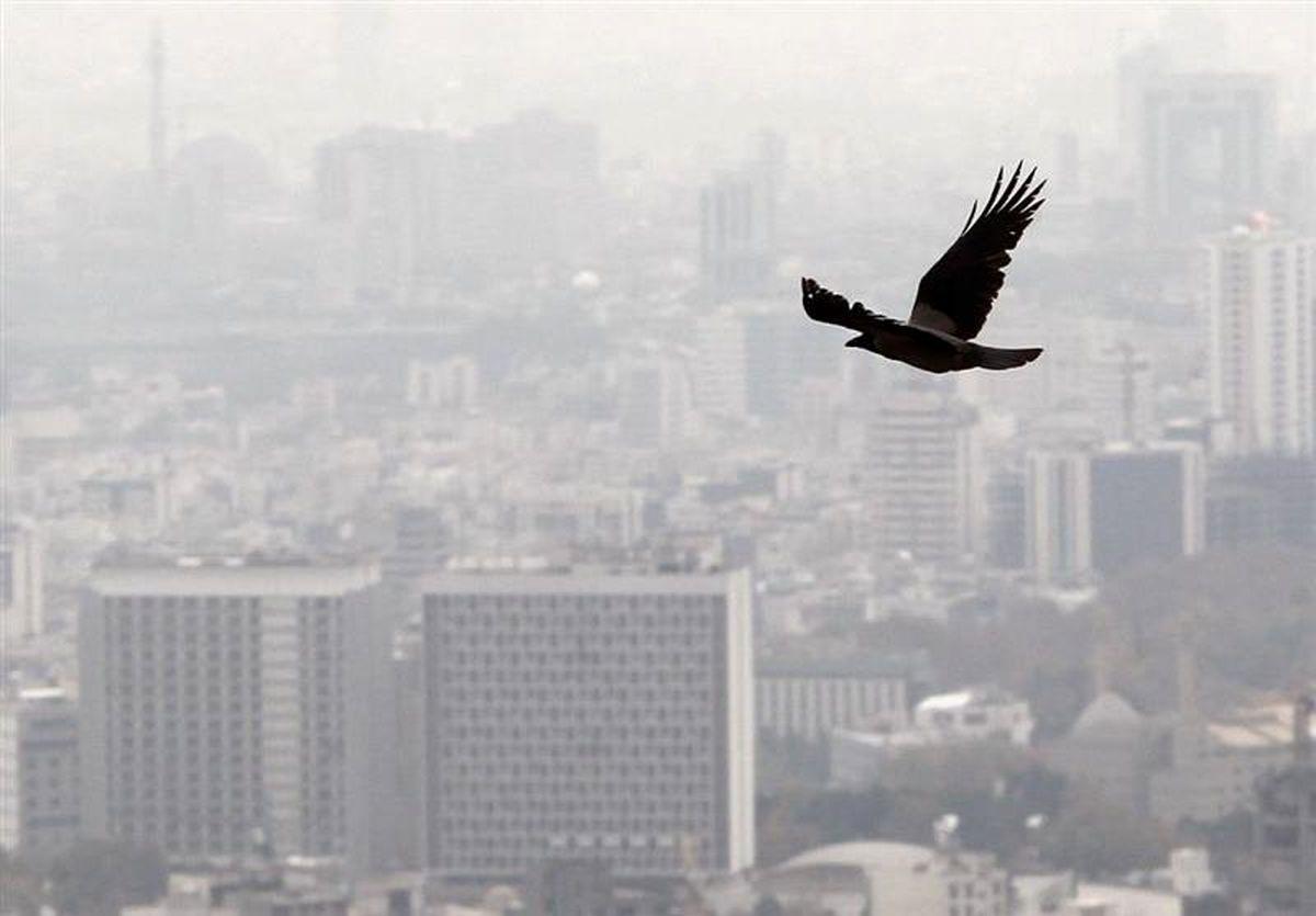 رشد قیمت مسکن در کدام مناطق تهران رکورد زد؟