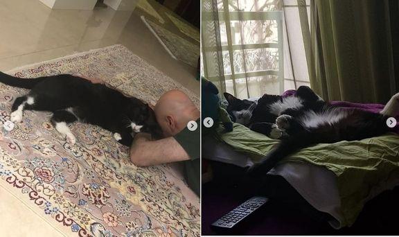 مرگ گربه یک کارتونیست و همدردی بازیگران!