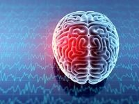 آیا ورزش بیش از حد مغز را خسته میکند؟