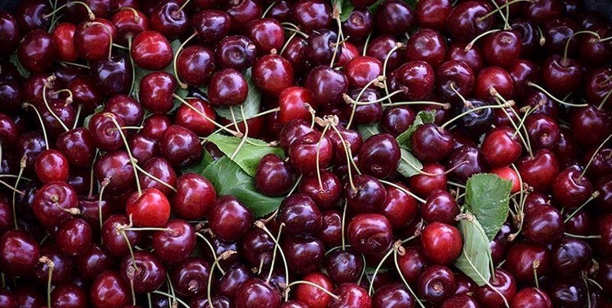 میوه های نوبرانه یکه تازی می کند