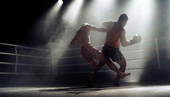 رقابت بوکسورها در عکس روز نشنال جئوگرافیک