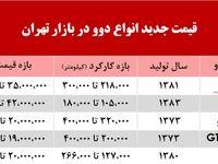 قیمت انواع دوو در بازار تهران +جدول