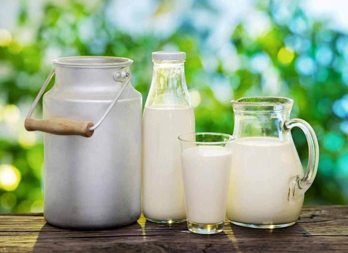 سه شنبه قیمتهای شیرخام و لبنیات تعیین تکلیف میشود/ برآورد قیمت جدید به حسابرسان سازمان حمایت واگذار شد