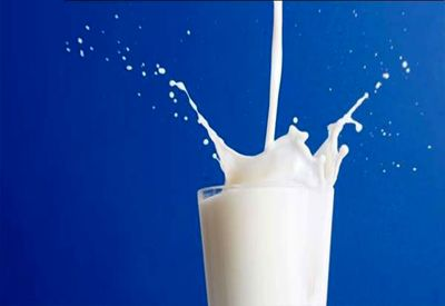توقف تعداد بسیاری از نمادها در پی افزایش قیمت شیر خام/ لبنیات گران شد
