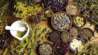 افق صادرات داروهای گیاهی تا ۲۰۵۰