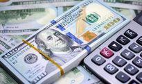 ٢۵٠شرکت غیر تولیدی ارز صادراتی را به کشور بازنگرداندهاند