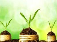 سه راه جذب سرمایه در اکوسیستم کارآفرینی ایران