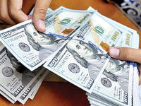 واسپاری تعیین نرخ دلار به صاحبان گروههای خاص