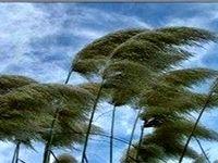 فردا؛ وزش باد شدید در تهران