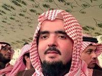 درخواست شاهزادههای محبوس سعودی از جهان