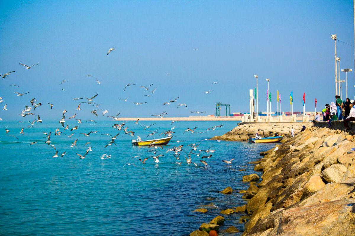 تهدید تنوع زیستی خلیجفارس