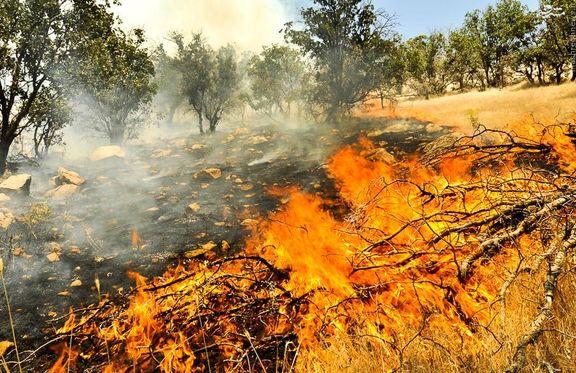 آتش به جان جنگلهای گیلان؛ از پرهسر تا سیاهکل