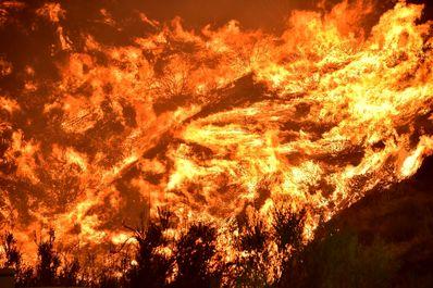 برگزیده تصاویر خبری ۲۴ ساعت گذشته/ 20مرداد