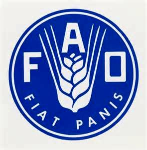 بهای مواد غذایی در سال۲۰۱۷ به بالاترین رقم خود رسید