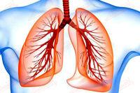 ۸ نکته برای داشتن ریه های سالم