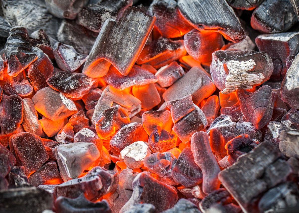 گرانی زغال؛ همپای کباب