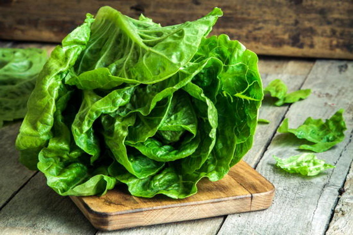 ۶ نوع سبزی، بیشترین تاثیر را در کاهش وزن دارند