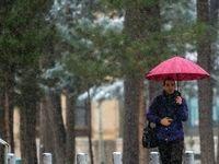 بارش نخستین برف زمستانی در اصفهان +تصاویر