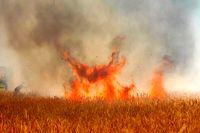 ۲۰ هکتار از علفزارهای رشت در آتش سوخت
