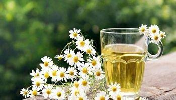 سمزدایی از دستگاه گوارش با کمک چای