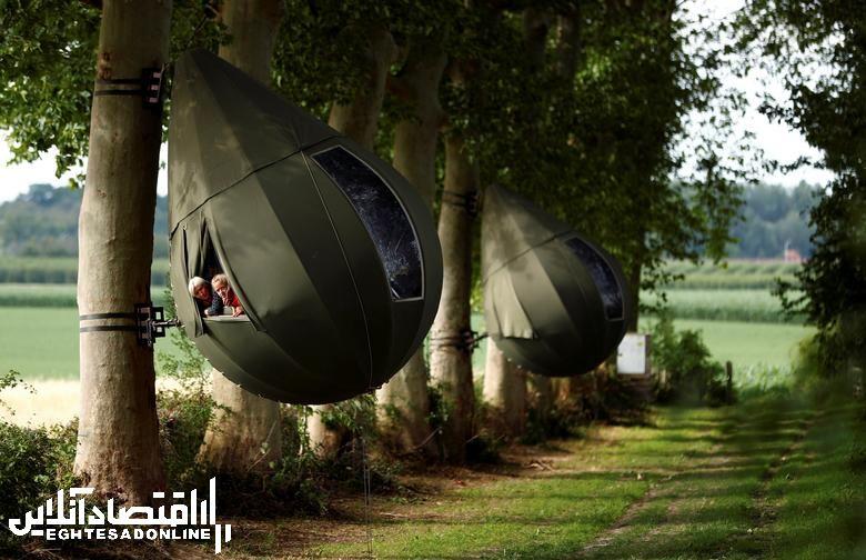 برترین تصاویر خبری هفته گذشته/ 20 تیر