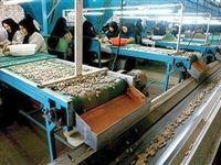 سهم ۳۰درصدی اشتغال بخش تعاون در استان تهران