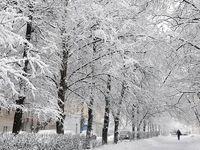 خیابانهای شمال تهران با نخستین برف قفل شد +فیلم