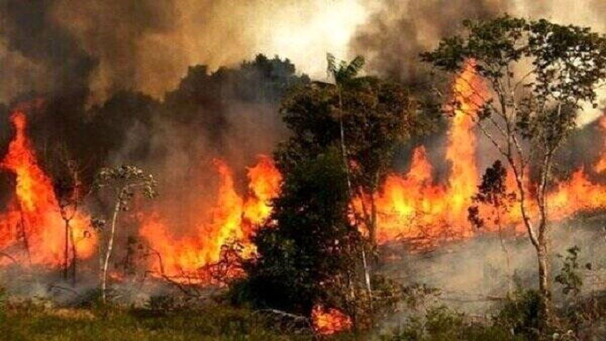 آتش سوزی یونان + عکس