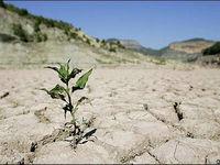 نذر آب در سرزمین نیمروز