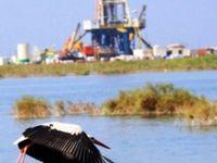 شرایط مطلوب تالابهای خوزستان فدای برداشتهای کشاورزی نمیشود