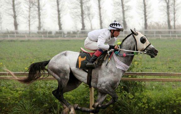 زین اسب ایرانی با قدمت ١٢٠ساله +عکس