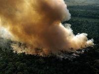 تلاش قبایل بومی برای نجات آمازون +تصاویر