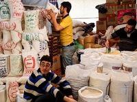 با پایان زودهنگام برداشت برنج قیمتها نشکست