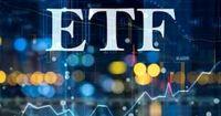 خریداران سهام دولتی برای بازگشت پولشان چه کنند؟