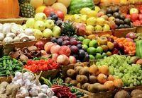 صادرات محصولات کشاورزی ٣٢درصد رشد کرد