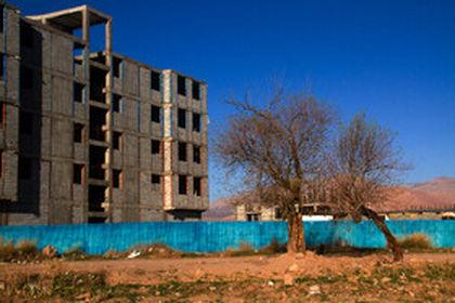 «درختان» قربانی توسعه شهری +عکس