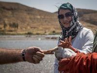 رهاسازی ۱۵گونه جانوری در پارک ملی خجیر +تصاویر