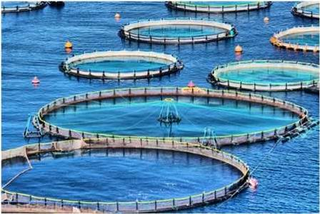 اجرای طرحهای آبخیزداری راه گریز از مشکلات خشکسالی است
