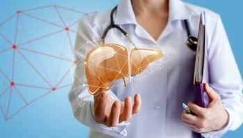 درمان کبد چرب با 4 گیاه دارویی