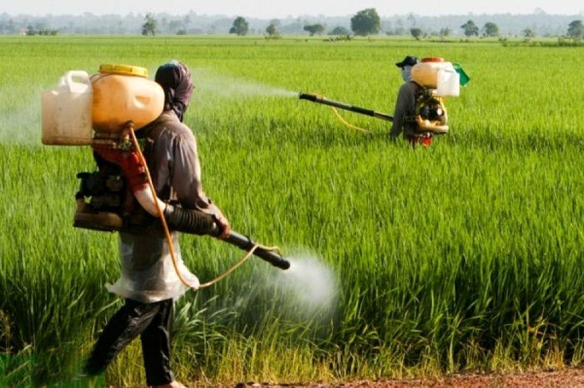 ممنوعیت واردات سموم کشاورزی با مشابه داخلی
